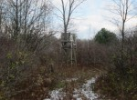 Tree Stand Hunting Land for sale upstate NY