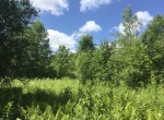 240 acres Hunting Land for sale in Hopkinton, NY!
