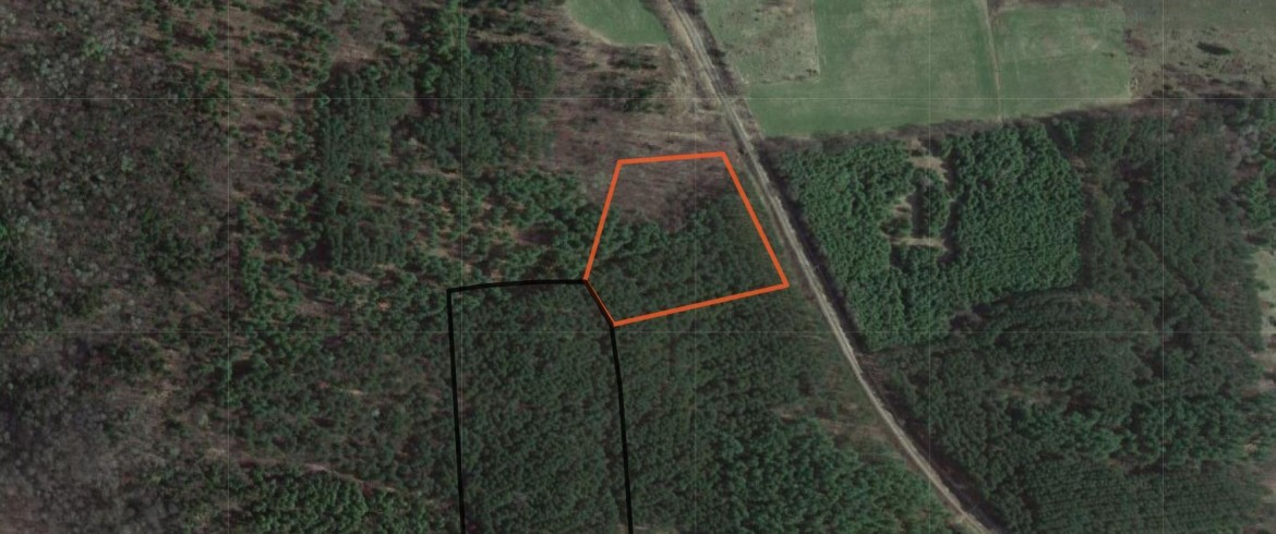 The property is wooded with a nice mix of white pine, red pine, and young hardwoods.