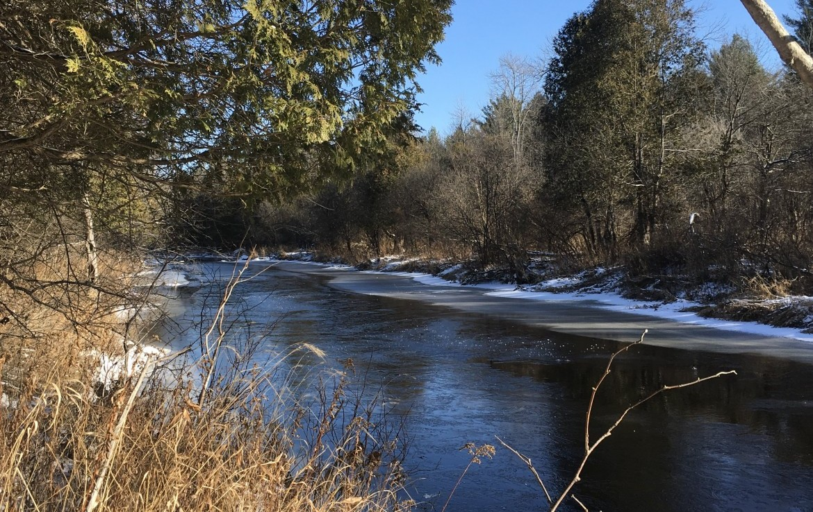 54 acres on Trout Brook Bordering State Land