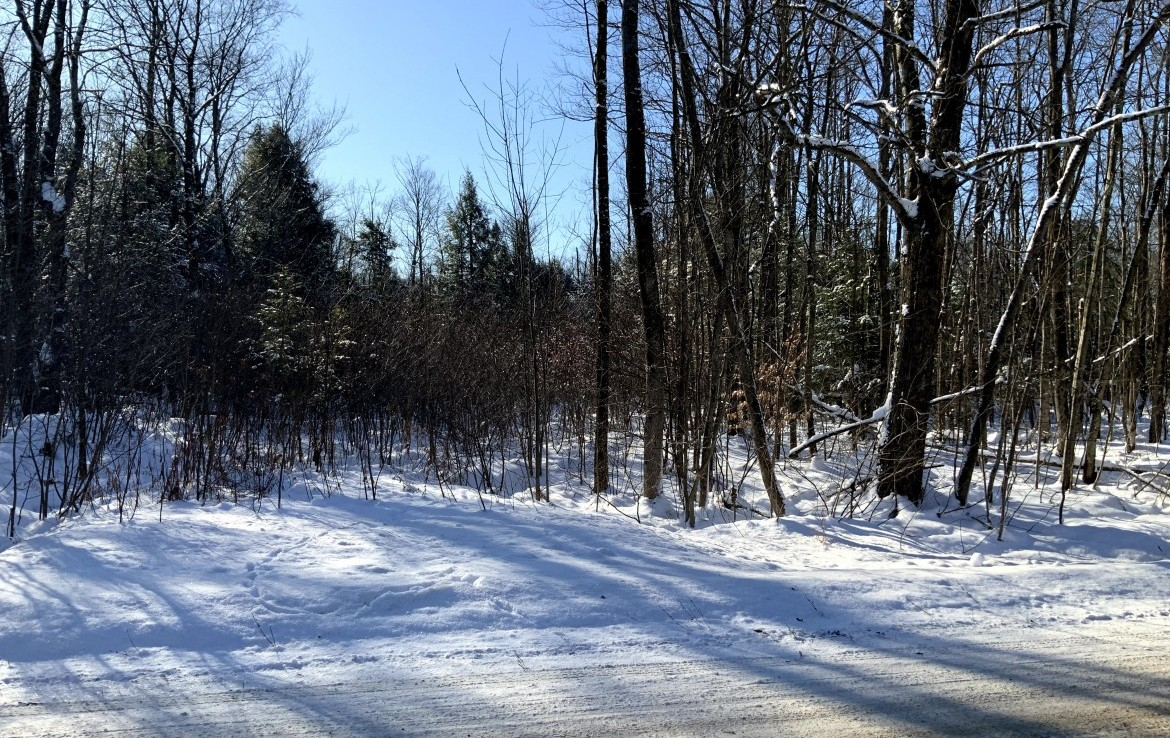 Great location for hunting, fishing camp directly on ATV trail near Pulaski, NY