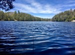 59 acre Adirondack Hunting Land for Sale Fine, NY!
