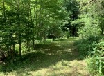 59 acres Land for Sale With Pond and Mature Timber, New Berlin, NY